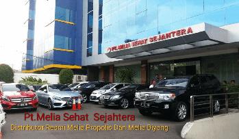 Kantor Melia Propolis di Jakarta