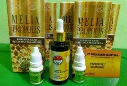Manfaat Melia Propolis Untuk Semua Penyakit